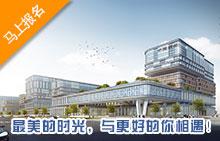 北京外国语大学合肥国际学院